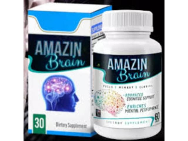 Introduction of Amazin Brain